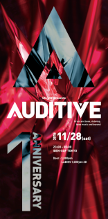AUDITIVE 15.11.28