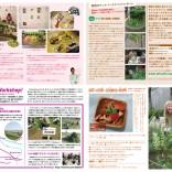 原宿ポケットパーク「植物マップ」(8月号)