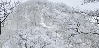 英彦山・英彦神宮