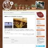 「原宿ポケットパーク園芸クラブ」ブログ開設